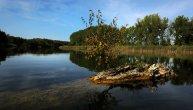 Kako je spaseno Gornje Podunavlje? (FOTO)