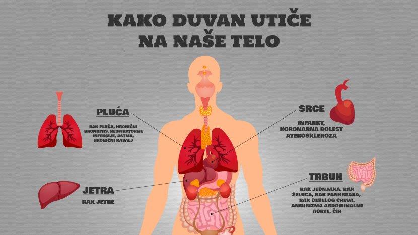 Duvan, cigarete, infografika