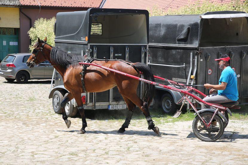 Sombor, Trka Konja