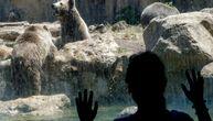 Ove životinje provedu život u patnji, da bi ljudima cvetali turizam i zarada (VIDEO)
