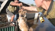 Na pse sakrivene u ruševinama iz borbenih vozila bacaju konopce- a cilj je plemenit (VIDEO)