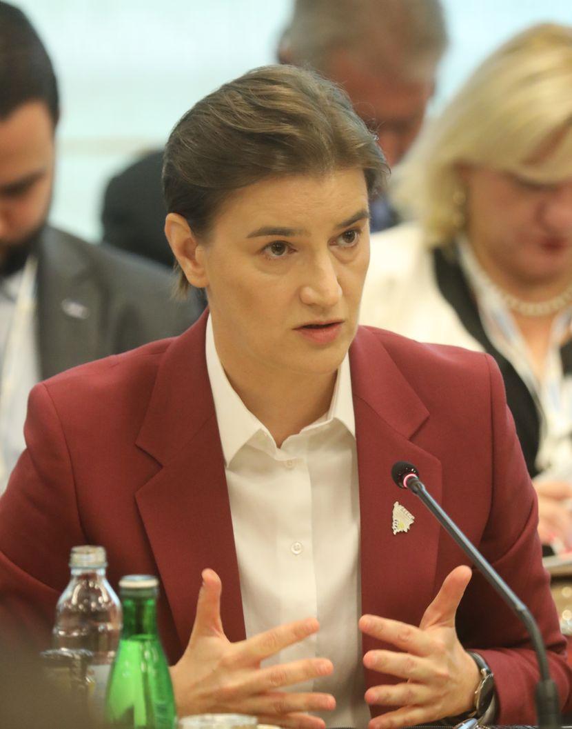 Ana Brnabić, plenarna sednica
