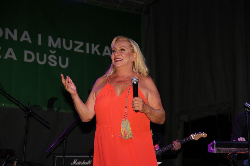 Vesna Zmijanac, Festival Ulaz,