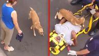 Kuca plakala za povređenim vlasnikom, a onda je pokazala svima kako se voli (VIDEO)
