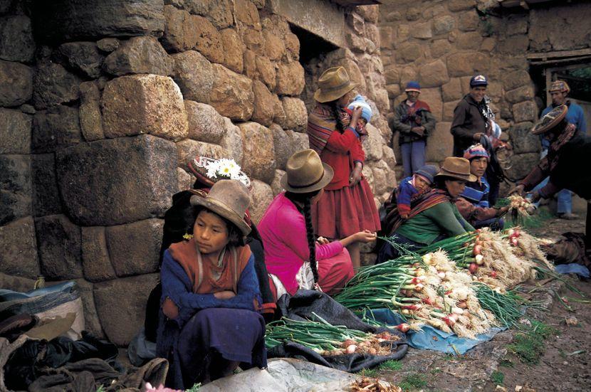 Narod Inka pleme