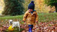 5 najpopularnijih psećih imena u Srbiji se daju deci: A ko su onda brojni Milutini, Živoradi i Toše?