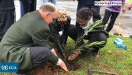 220 miliona sadnica za 1 dan: Etiopija ozbiljno rešila da ozeleni zemlju