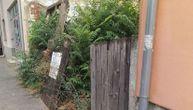 Leskovčani u panici zbog napuštene kuće: Zmije izlaze iz nje, vlasnici kažu da ne mogu ništa