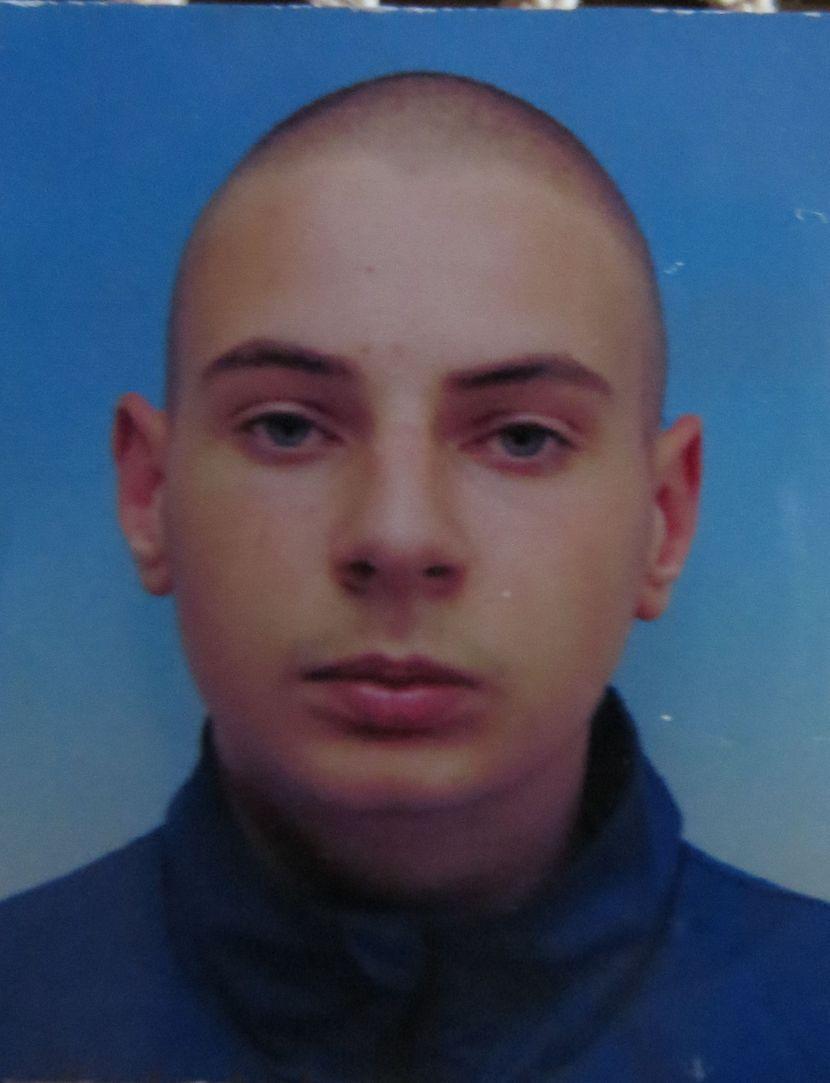 Stefan Kocić, saobraćajna nesreća, Niška Banja