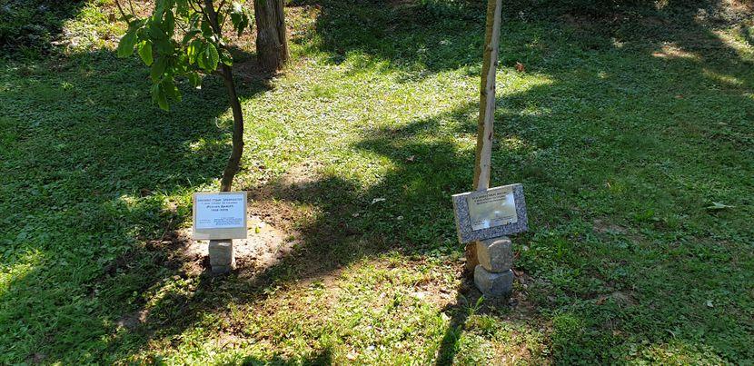 Stabla Gagi i Mileni