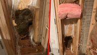 Neobična policijska potera: Medved u kuću ušao na vrata, a da bi izašao - razvalio zid (VIDEO)