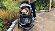 Muškarac i žena gurali kolica šetalištem, u njima su bili psi: Linčovali su ih na društvenim mrežama