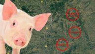 U ova tri sela nedaleko od Beograda je pronađena svinjska kuga (VIDEO)