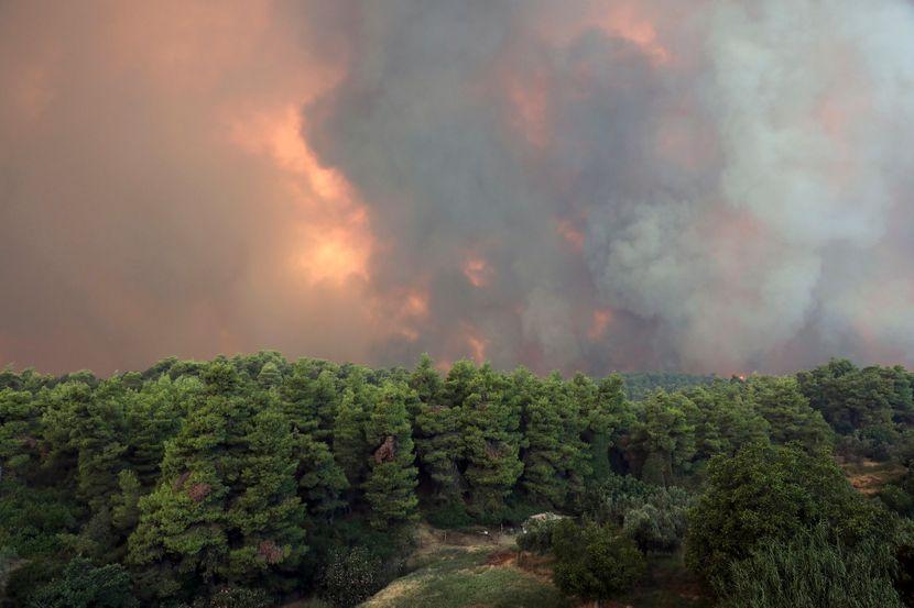 Grčka Evija požar