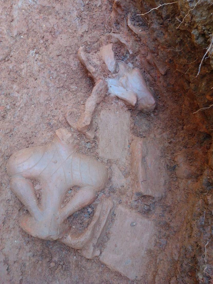 Sanja Crnobrnja Krasić, arheolog, Župska Venera pronađena na Vitkovačkom polju