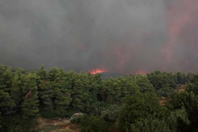 ostrvo Evija, Grčaka, požar