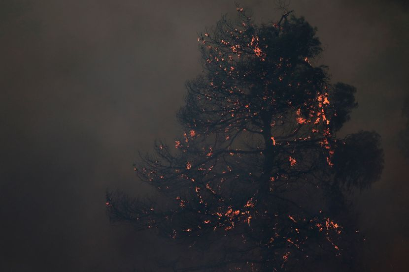 Evija Grčka požari