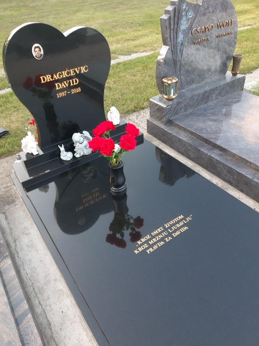 David Dragicevic, spomenik