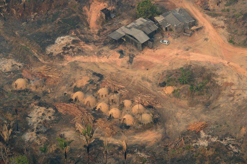 Požari, Brazil Amazon Fires