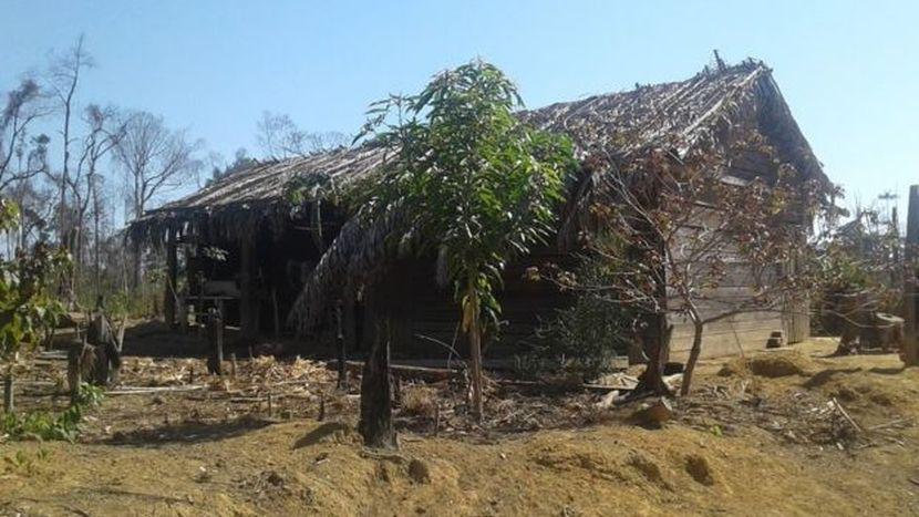 Idi i Romildo, Amazonija
