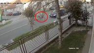 Procurio stravičan snimak pogibije bicikliste u Futogu: Zbog 3 detalja povela se velika diskusija