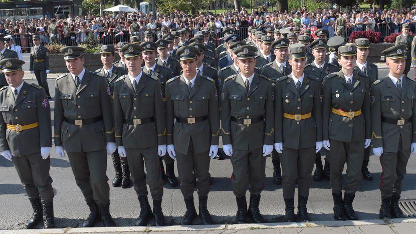 Vojska Srbije, Narodna skupština