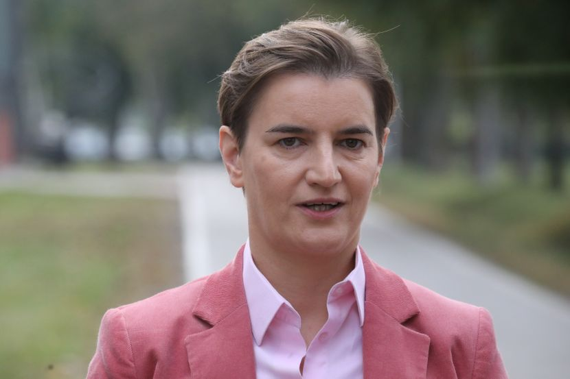 Ana Brnabić, fabrika Modin
