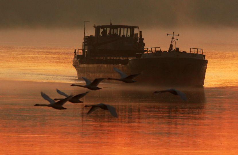Magično jutro na Dunavu