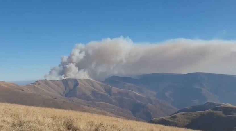 Požar, Stara planina