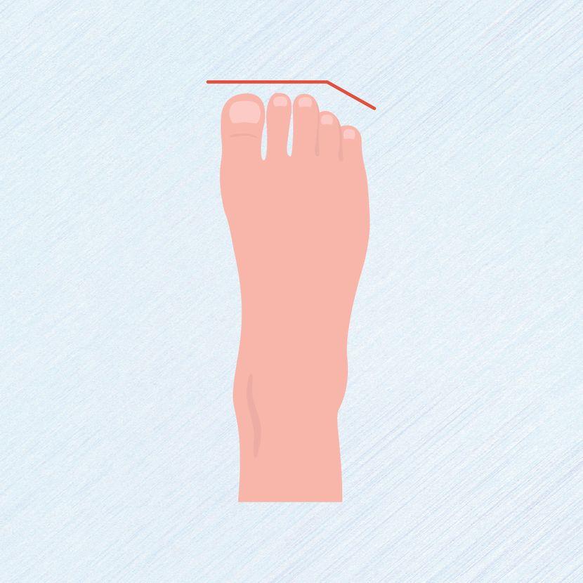 Tipovi stopala, prsti