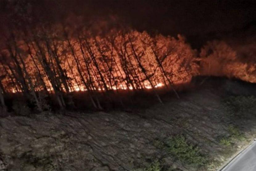 Požar, Stara planina, Suva planina