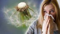 Raste koncentracija alergena u vazduhu, spremite se za ludilo: Polen počinje da divlja, a tek je počelo (SPISAK SVIH VREDNOSTI)