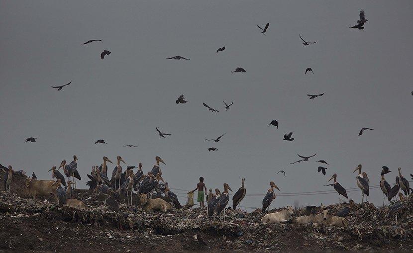 Deponija smeća u Indiji