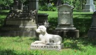 U Zagrebu otvoreno groblje za kućne ljubimce, prvo u ovom delu Evrope