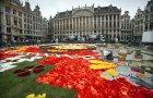 Cvetni tepih u Briselu
