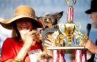U Kaliforniji je održano tradicionalno takmičenje za Najružnijeg psa na svetu.